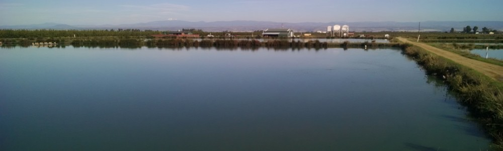 For Sale: Northern California Warmwater Aquaculture Facility